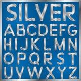 Silverstilsort Arkivbild
