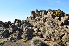 Parco di Haleakala Immagini Stock Libere da Diritti