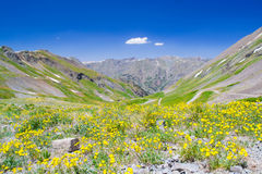 Silverton landscape Royalty Free Stock Photo