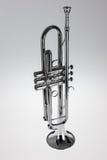 Silvertrumpet Royaltyfri Bild