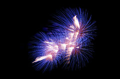 Silvester Royalty Free Stock Photos