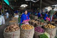 Guambiano woman selling potato in Silvia, Colombia stock image