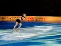 Silvia Fontana Stock Photo