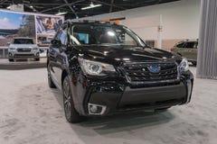 Silvicoltore di Subaru su esposizione fotografia stock libera da diritti