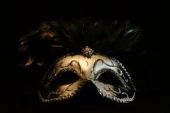 silvrig maskering Royaltyfria Bilder