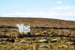 Sim em letras de madeira brancas grandes com charneca escocês no fundo Fotos de Stock Royalty Free