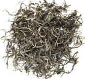 Simao Yin Si zielona herbata Zdjęcie Stock
