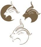 Simbólico uma cabeça das cabras Imagem de Stock