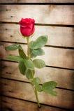 simbol влюбленности Стоковые Фотографии RF
