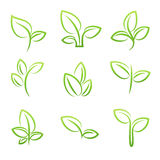 Simbol лист, комплект зеленых листьев конструирует элементы Стоковое фото RF