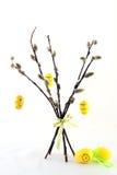 Simbol de Pâques sur le saule Photographie stock libre de droits