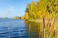 Simboli del lago autumn Immagini Stock Libere da Diritti