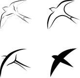 Simboli dell'uccello Fotografia Stock Libera da Diritti