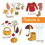 Simboli di autunno dell'illustrazione di vettore Fotografie Stock Libere da Diritti