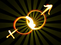 Simboli maschii e femminili Immagini Stock