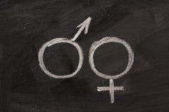 Simboli maschii e femminili di genere sulla lavagna Immagine Stock