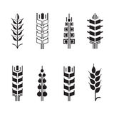 Simboli per l'insieme dell'icona di logo, icone dell'orecchio del grano delle foglie Fotografia Stock Libera da Diritti