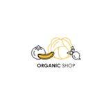 Simbolice la plantilla del diseño en la línea estilo para los productos orgánicos - símbolos del icono de las verduras en dos col stock de ilustración