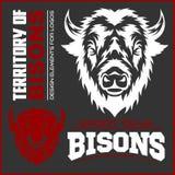 Simbolo animale capo della Buffalo Grande per l'icona Logo Design del segno dell'etichetta del distintivo Illustrazione di Stock