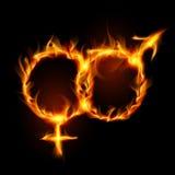 Simbolo burning della donna e dell'uomo Immagini Stock