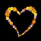 Simbolo decorativo del cuore dai fiori di colore Fotografie Stock