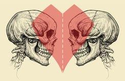 Simbolo dei crani e del cuore delle coppie con la linea di taglio di forbici Immagini Stock Libere da Diritti