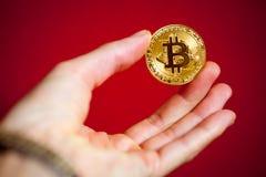 Simbolo del bitcoin dell'ultimo della moneta di oro di logo di Bitcoin Immagine Stock