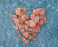 Simbolo del cuore di autunno (colore d'annata) Fotografie Stock