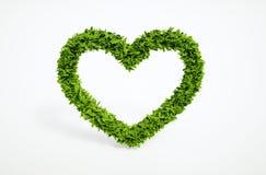 Simbolo del cuore di ecologia Fotografia Stock