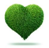 Simbolo del cuore fatto di erba Fotografia Stock