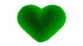 Simbolo del cuore fatto di erba Fotografia Stock Libera da Diritti
