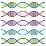 Simbolo del DNA Illustrazione di vettore Royalty Illustrazione gratis