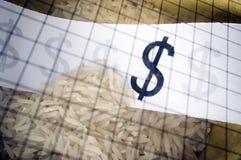 Simbolo del dollaro con riso Fotografie Stock