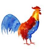 Simbolo 2017 del gallo Stampa dell'acquerello Fotografia Stock Libera da Diritti