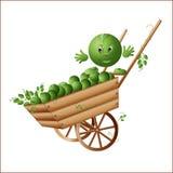 Simbolo del raccolto, piselli sul carretto Fotografie Stock