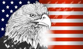 Simbolo dell'aquila e della bandiera americana di U.S.A., di indipendenza e di libertà Fotografie Stock