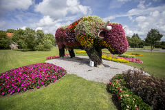 Simbolo della città di Ventspils - mucca immagine stock