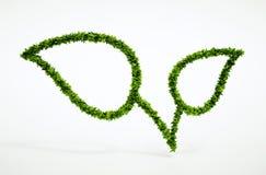 Simbolo della foglia di Eco Fotografie Stock Libere da Diritti