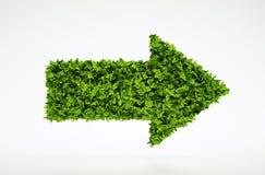 Simbolo della freccia di ecologia Immagine Stock Libera da Diritti