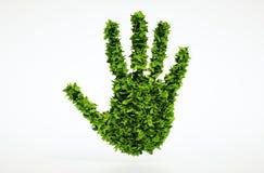 Simbolo della mano della foglia di ecologia Fotografia Stock Libera da Diritti