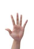 Simbolo della mano isolato Fotografie Stock Libere da Diritti