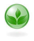 Simbolo della pianta. Immagini Stock Libere da Diritti