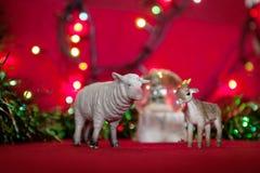 Simbolo delle pecore della sfuocatura del lamé della ghirlanda di anno su un fondo rosso Fotografia Stock