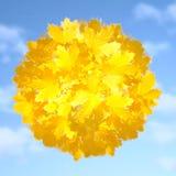 simbolo di autunno Fotografia Stock