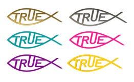 Simbolo di Cristo come verità Conoscenza vera illustrazione 3D illustrazione di stock