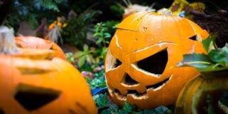Simbolo di Halloween Zucca intagliata di Halloween immagine stock