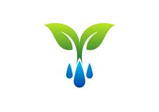 Simbolo di logo, della rugiada e della pianta delle gocce di acqua, icona della molla Fotografie Stock Libere da Diritti