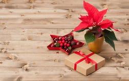 Simbolo di Natale Fiore della stella di Natale Contenitore di regalo Immagini Stock