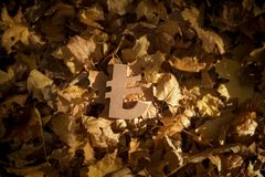 Simbolo di valuta della Lira su Autumn Leaves in Sun di sera tardi fotografie stock
