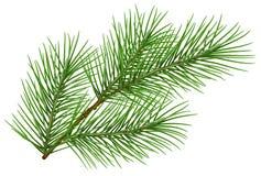 Simbolo lanuginoso verde del ramo del pino del nuovo anno Isolato su priorità bassa bianca illustrazione di stock